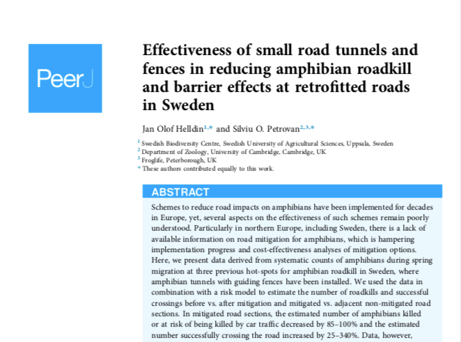 Effectiveness of small road tunnels and fences in reducing amphibian roadkill and barrier effects