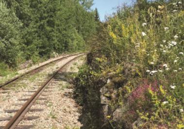 Biodiversity in railway habitats (English summary)