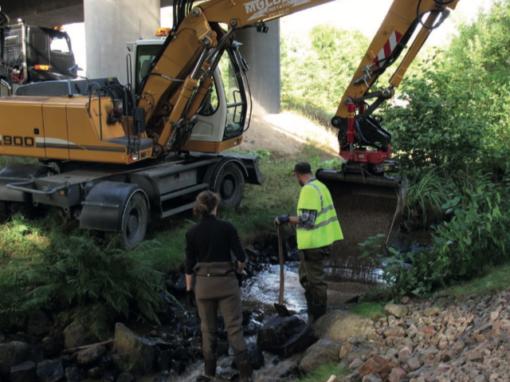 Samarbete – vägen till lyckade naturvårdsprojekt i infrastrukturmiljön