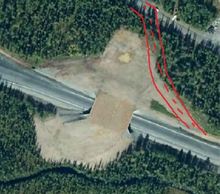 Påverkan på faunan av ny väg vid faunabron i Mertainen